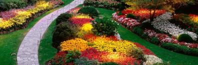 Os dois tipos de escritores: paisagistas e jardineiros